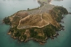 Rotoroa Island. Photo / Greg Bowker