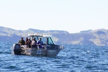 Adventure Fishing Charters. Photo / Supplied