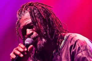 Horace Andy's unique voice helped him stand out. Photo / Supplied