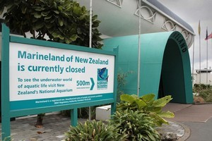 The Friends of Marineland say it could re-open as an eco-educational facility. Picture / APN