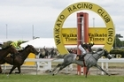 Jason Waddell has Grey Ghost well clear to win the Waikato Gold Cup. Photo / Trish Dunell