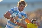 Juan martin Fernandez Lobbe of Argentina. Photo / Getty Images