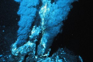 Microbes feeding off hydrothermal vents transform the structures they inhabit into 'natural batteries'. Photo / NOAA Pacific Marine Environmental Laboratory's Vents Program