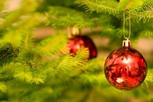 Christmas trees are responsible for why allergy suffering peaks around this time of year. Photo / Thinkstock