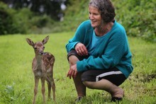 Jill Hathaway with her adopted Fellow deer fawn. Photo / APNZ 