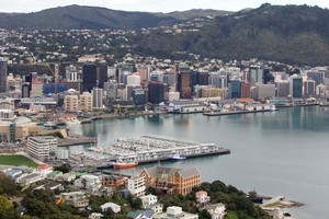 Wellington is a top local destination according to recent polls. Photo / Mark Mitchell