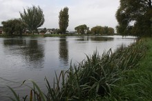 The Avon near New Brighton Road where a driver died after their car plunged into the river. Photo / NZ Herald