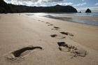 New Chums Beach on the Coromandel Peninsula. Photo / NZ Herald