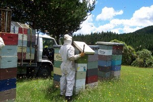 Beauty and health products are a part of the honey business. Photo / Supplied
