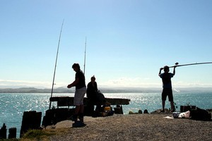 Recreational fishing operates entirely outside the quota and there is nothing to stop more people fishing, or the existing bunch fishing more often. Photo / APN