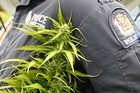 Police believe the drugs ring was worth millions. Photo / APN