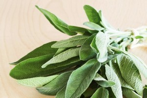 Aromatic sage suits being used with fatty foods. Photo / Supplied