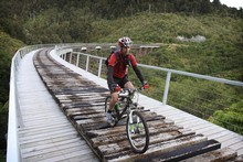 Herald reporter Martin Johnston rides over the Hapuawhenua Viaduct on the historic Old Coach Rd trail. Photo / Greg Bowker