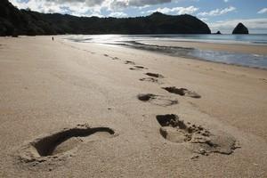New Chums Beach on the Coromandel Peninsula. Photo / Alan Gibson