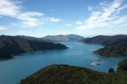 A man has died in the Marlborough Sounds after he became tangled in kelp. File photo / NZ Herald