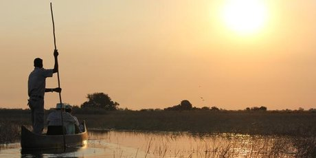 Gliding across the tranquil waters of the Okavango in a traditional mokoro. Photo / Jill Worrall