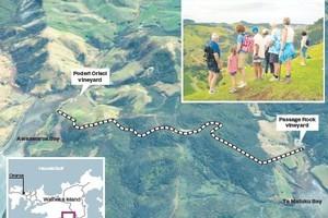 The walkway between Poderi Crisci and Passage Rock Wineries. Photos / Google Earth/NZ Herald