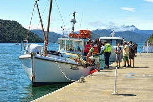 Injured people are unloaded at Picton in the Marlborough Sounds. Photo / Supplied