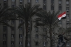 An anti-government protester climbs up a tree in front of a government building in Tahrir Square in Cairo. Photo / AP