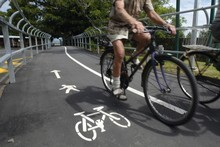 Cyclists make their way along Northwestern cycleway. Photo / Dean Purcell