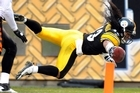 Pittsburgh Steelers safety Troy Polamalu  scores a touchdown. Photo / AP