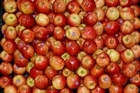 Turners & Growers grows apples in 16 different countries. Photo / Brett Phibbs