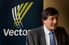 Vector chairman Michael Stiassny. Photo / Paul Estcourt