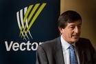 Vector chairman Michael Stiassny. Photo / Paul Estcourt