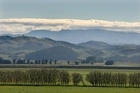 Photo / Hawkes Bay Today