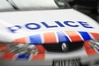 A west Auckland toddler died after being run over in a driveway.