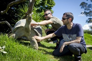 Ben White and Andrew Spraggon of Sola Rosa with a galapagos at Auckland Zoo. Photo / Supplied