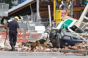 Police dogs being used to search amongst the rubble along Manchester Street, Christchurch. Photo / Mark Mitchell