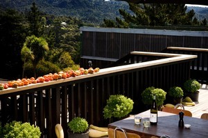 Home grown tomatoes ripen in the sun on the deck of The Refreshment Room in Titirangi. Photo / Babiche Martens