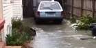 Watch: Driveway turns into river