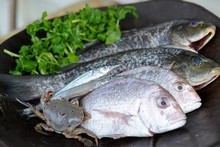 Fish waste makes the perfect organic fertiliser for your garden. Photo / Jason Dorday