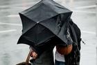 Rain. Photo / Dean Purcell