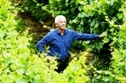 Sir George Fistonich in Villa Maria Wines' new vineyard in Oruarangi Rd, Mangere. Photo / APN