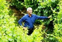 Sir George Fistonich in Villa Maria Wines' new vineyard in Oruarangi Rd, Mangere. Photo / APN