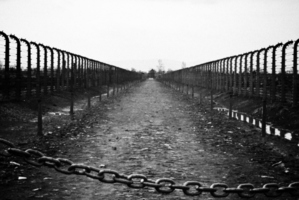 What does the word 'holocaust' really mean today? Photo / File