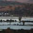 An overview of the flooded region around Wagga Wagga. Photo / AAP