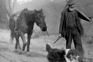 Forward-thinking Otago prospectors used their hard-won gold to establish farms whose production continues to earn overseas income to this day. Photo / Supplied