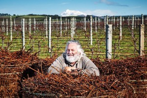 Peter Yealands owns Yealands Estate, regularly makes the New Zealand rich list and in the past two decades has become an environmental champion. Photo / Supplied