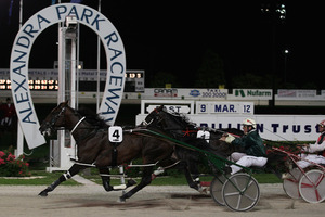 Maurice McKendry drives Sir Lincoln to victory in the $250,000 Trillian Trust Auckland Cup at Alexandra Park last night. Photo / Getty Images