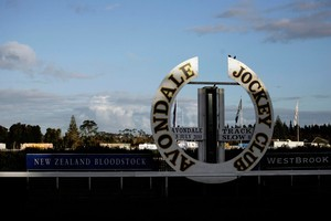 Avondale Racecourse. Photo / Dean Purcell