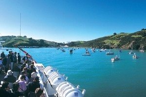 A ferry brings visitors to Matiatia on Waiheke Island, where the Waiheke Free Walks programme has been popular over summer. Photo / Supplied