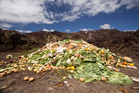Green-waste recyclers have called on the council to ban garden and food waste from general rubbish collections. Photo / Michelle Hyslop