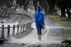 Out for a walk during heavy rain along Tamaki Drive in Auckland this summer. Photo / Jason Dorday