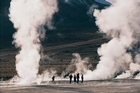 Plumes of steam rise from the ground on the El Tatio geyser field. Photo / Anna Leask