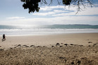 Orewa Beach. Photo / Sarah Ivey
