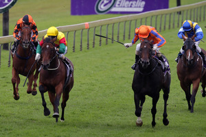 Burgundy (second from right) beats St Yazin in the Coolmore Australia Mr Tiz Trophy at Ellerslie on Saturday. Photo / Sarah Ivey